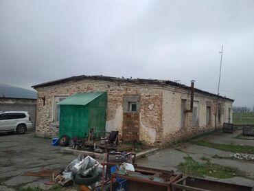 мал-сарай в Кыргызстан: Продается сарай на 200 голов, участок 1 гектар 33 соток, свет вода