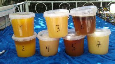 Другая мебель - Кыргызстан: Токтогульский горный мёд,чистый на 100% Южный,Майский мёд 1ой выкачки