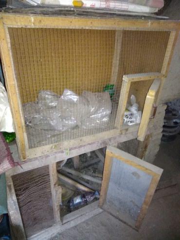 Товары и аксессуары для животных в Кара-Суу