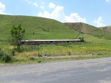 мал-сарай в Кыргызстан: Ош шаары Папан суу сактагычтын боюнда Стандарт Сарай (варианты бар)