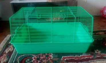 Продаю клетку для морской свинки или кролика в Бишкек