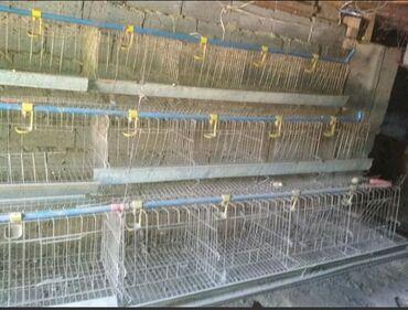 декоративные наволочки лен в Кыргызстан: Продаю клетки для кур в комплекте все имеется на количество 200 курей