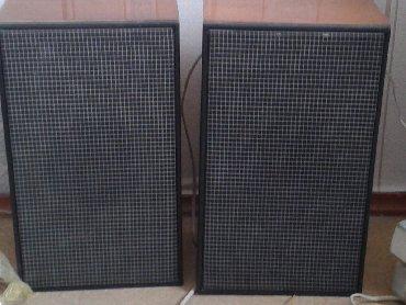 акустические системы qitech колонка в виде собак в Кыргызстан: Продаются акустические колонки 2шт
