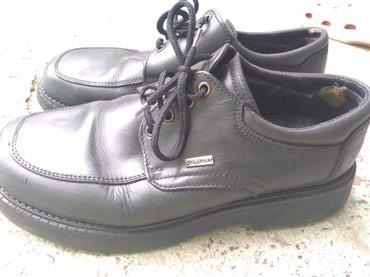 Muske cipele - Ruma