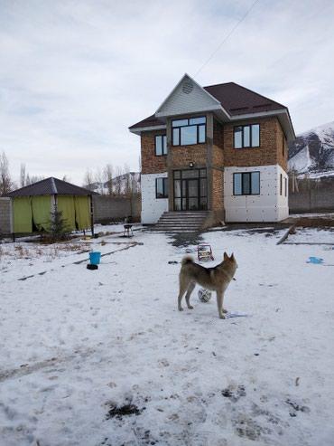 Vip районе продается дом с участком 8 в Лебединовка