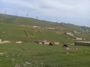 qobuda torpaq satilir - Azərbaycan: Satılır 4 sot