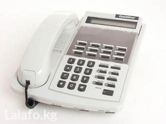 Каждый системный телефон работает в Бишкек