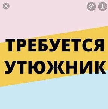 Утюжники - Кыргызстан: Утюжник. С опытом. Ошский рынок