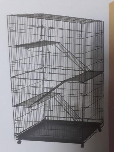 Зоотовары - Кок-Ой: Клетки для шиншил есть для попугаев хомячков кроликов и морских свинок