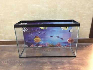 Продаю аквариум. Новый, 20 литров. В в Бишкек