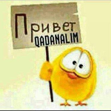 iw yerleri 2018 - Azərbaycan: Iw axtariram administrator iwi olsun iwlemiwem,axmaq adamlarana baci