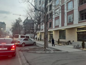 Продажа квартир - Унаа токтотуучу жай - Бишкек: Продается квартира: Элитка, Филармония, 3 комнаты, 98 кв. м