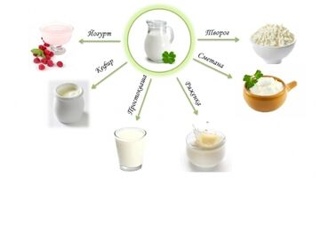 Заквасочные культуры для кисломолочной продукции В нашей