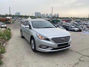 Транспорт - Маловодное: Hyundai Sonata 2 л. 2016 | 150 км