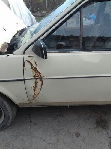 Audi  в Шопоков