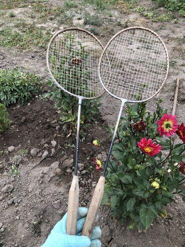 Ракетки - Бишкек: Продаю срочно теннисные ракетки