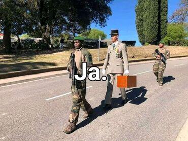 Zaposlenje - Srbija: Asistent. Iskusan. Skraćeno radno vreme