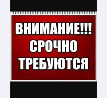 продажа уаза в Кыргызстан: Торговый агент. Без транспорта. С опытом. 6/1