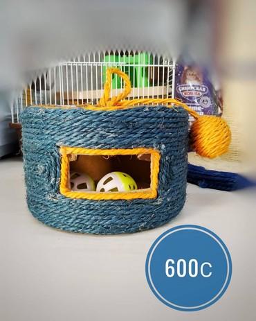 мягкие домики для кошек в Кыргызстан: Когтеточка - игрушка для кошек