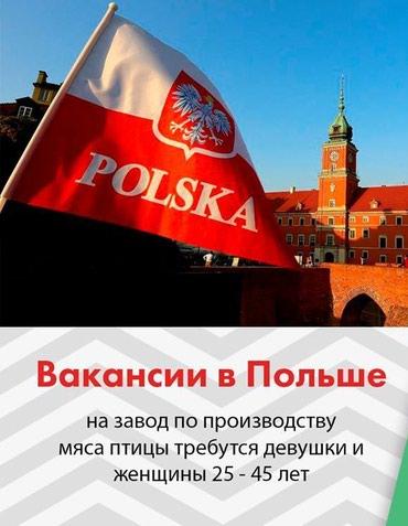 Работа за границей/ Globus consulting Работа на заводах по