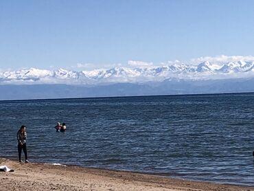 бишкек сдаю квартиру в Кыргызстан: Куплю 1к квартиру для себя! За наличный расчет, в Бишкеке
