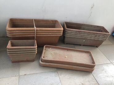 Bitkilər üçün dibçəklər - Azərbaycan: Hamisi 35man 13 eded gul qabi islek deyil sadece toz tutub tezedir