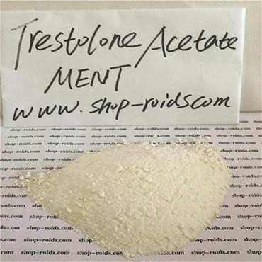 Trestolone Acetate MENT Raw powder HPLC≥99% from σε Karyes