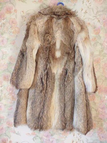 Шубы - Сокулук: Шуба  Шуба итальянская волчья - продается, высокого качества.   Новая