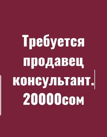 продажа терминалов в Кыргызстан: Требуется продавец консультант.  График работы с10:00-18:00