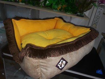 balaca itler satilir - Azərbaycan: It ve pisiklerin yatmasi ucun teze yataqlar satilir. Catdirilma