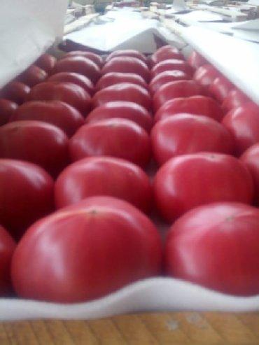 выездной кейтеринг в Азербайджан: Rozviy pomidor. topdan satiw