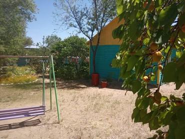Отдых на Иссык-Куле в Кыргызстан: Дорогие друзья!Спешим объявить об отдыхе на южном берегу нашей