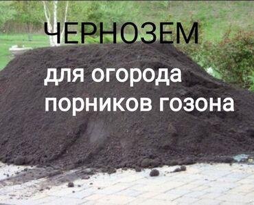 392 объявлений: Чернозем для гозона порников огорода чернозем для гозона порников