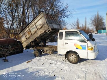 текстовые переводы в Кыргызстан: Портер такси переводим любые грузы по Сокулуку куплю перья совы