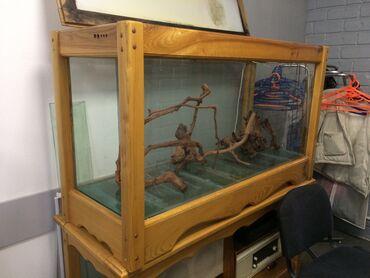 Продаю аквариумные коряги 2800