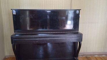 İdman və hobbi - Biləsuvar: ✔150 man(28 may). Terek pianino.Dillerikoku yaxsi