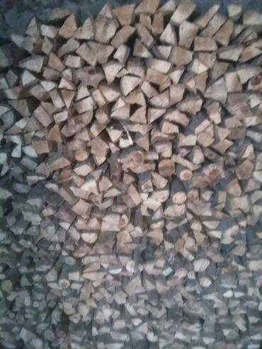52 объявлений: Продаю сухие дрова куб 3000с.Ленинское