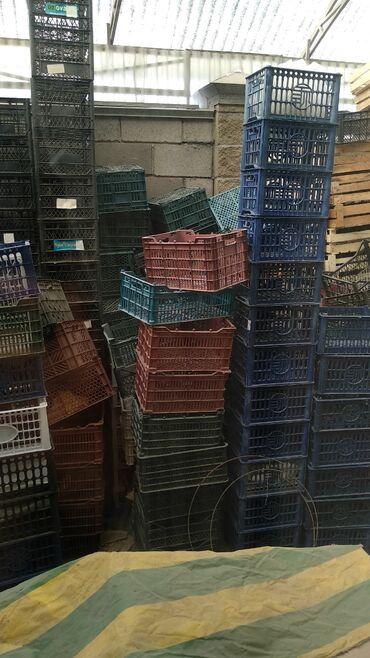 ящик-пластмассовый в Кыргызстан: Продаю ящики пластмассовые. Есть в наличии ~500шт. Цена за шт