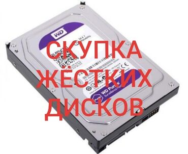 Скупка жестких дисков г.Токмок