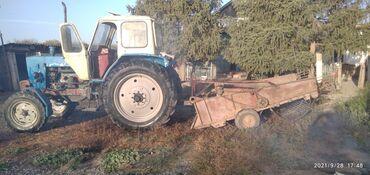 бала караганга кыз керек 2021 in Кыргызстан | БАШКА АДИСТИКТЕР: Трактор юмз,капалка, касилка сатылат трактор абалы жакшы, 4 донголок