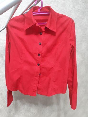 11227 объявлений: Рубашки хлопок . Состояние отличное,почти новые. размеры s,m