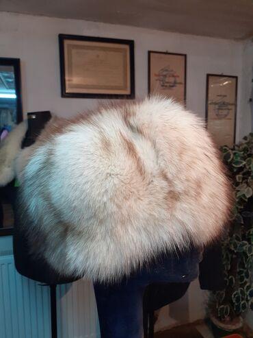Avo krzno obim - Srbija: Subara polarna lisica. Prirodno krzno. Obim 59 60cm