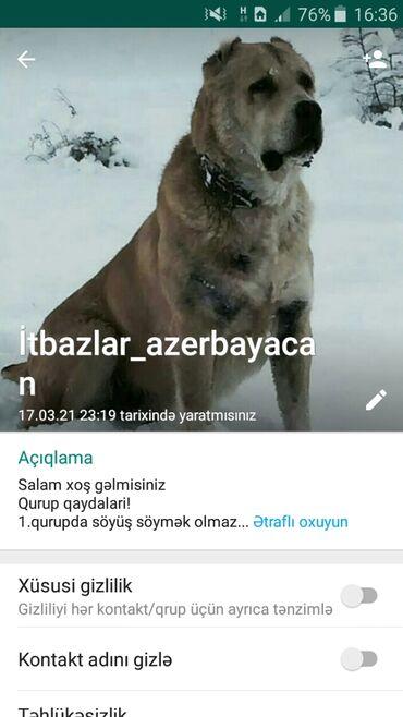 Bizim itbazlar_azerbaycan qrupmuza qoşulmaq isdiyən vacapda yazsin