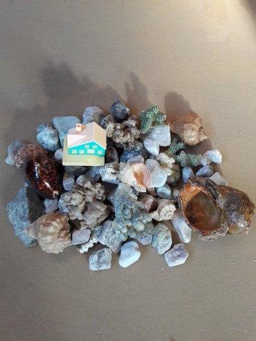 Камни, ракушки, кораллы для оформления аквариума