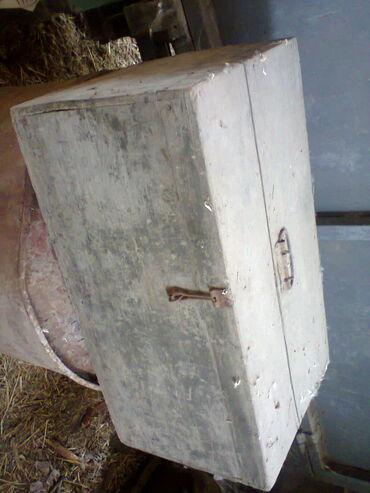 Kućni dekor - Vrbas: Vojnički drveni sanduk iz prošlog veka, star oko 100 godina, u