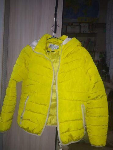 Желтая куртка размер 38-40
