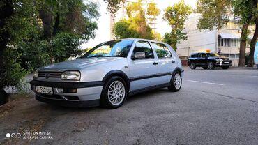 Volkswagen Golf 2 л. 1995 | 250 км