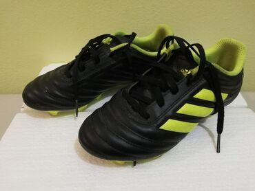 Sport i hobi - Uzice: Kopacke adidas Copa. Nosene par puta. Kao nove, sto se vidi po