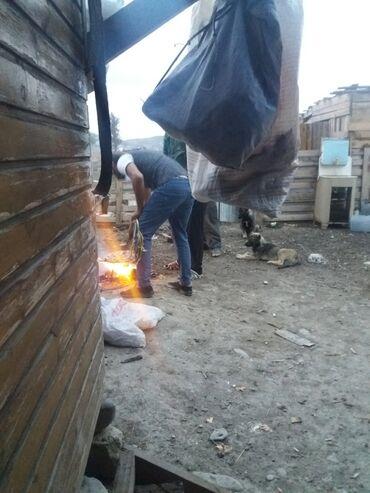 Недвижимость - Мараза: Qışlaq icarəyə verirəm. Qobustan rayonu. xilmilli kəndində yerləşir