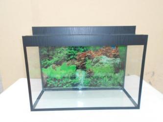 Bakı şəhərində teze akvarium uzunu60sm hundurluyu 45 sm eni 25 sm